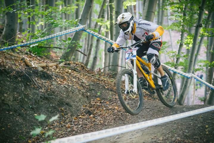 Foto Landesverband Radsport Sachsen-Anhalt eV MTB Downhill (Small)